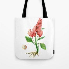Quinoa Tote Bag