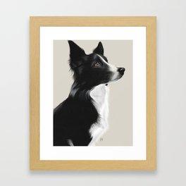 Kira - Border Collie Framed Art Print