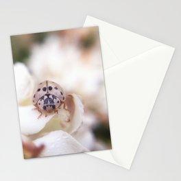 Elegant Lady Stationery Cards