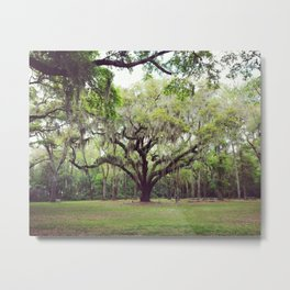 Savannah Metal Print