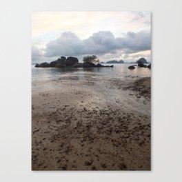 Mud Beach Canvas Print