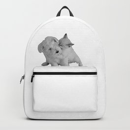 kitten kissing puppy Backpack