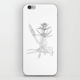 twisting vine iPhone Skin