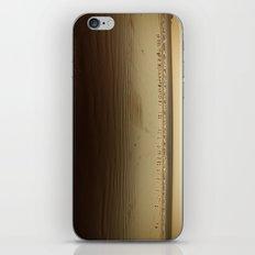 Seagulls on the Horizon iPhone & iPod Skin