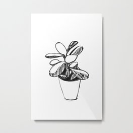 Succulente en pot - monochrome Metal Print
