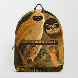 Album de aves amazonicas - Emil August Göldi - 1900 Amazon Animals Exotic Owls Backpack