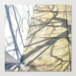 Yesterday's shadows ... Tomorrow's tales Canvas Print
