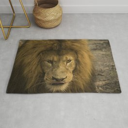 Lion - Time To Eat Rug