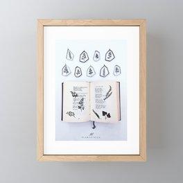 FOREST BOOK Framed Mini Art Print