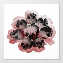 aromatic  Canvas Print