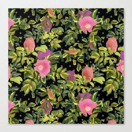 Pink rosehip, pink rosehip, black background, roses on black Canvas Print