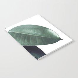 Ficus Elastica #18 #White #foliage #decor #art #society6 Notebook