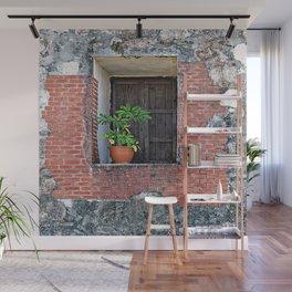 Plant on a Windowsill Wall Mural