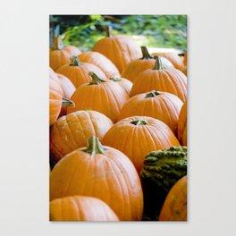 Pumpkin Patch Field Canvas Print