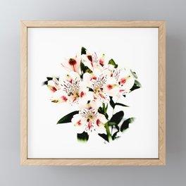 White Flowers Framed Mini Art Print