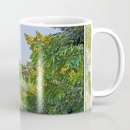 PHEWA LAKE POKHARA NEPAL  Coffee Mug