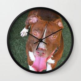 Prestigious Pitbull Wall Clock