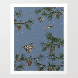FLYING SQUIRRELS IN THE PINES (twilight) Art Print