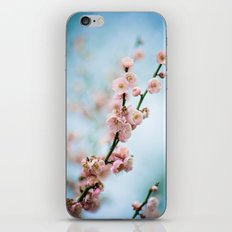 apricot blossom 2 of 2 iPhone & iPod Skin