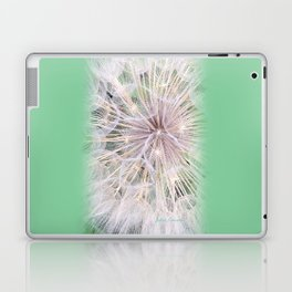 Milkweed Laptop & iPad Skin