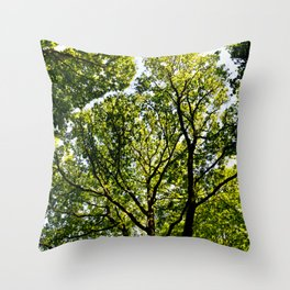 The quiet Forest Throw Pillow