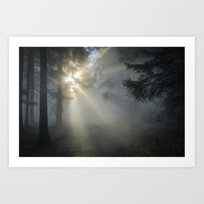 Winter Sunrise in the Forest Art Print