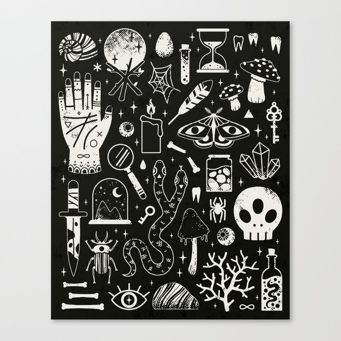 Curiosities: Bone Black Canvas Print