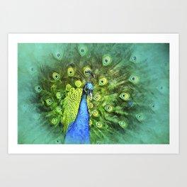 Peacock Pinwheel Art Print