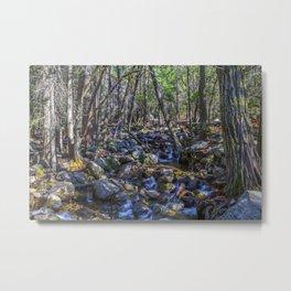 Yosemite Woodland Metal Print