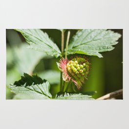 Young Salmonberry Photography Print Rug