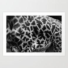 Giraffe Skin Art Print