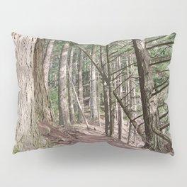 SHADOWS ON A WOODLAND PATH Pillow Sham