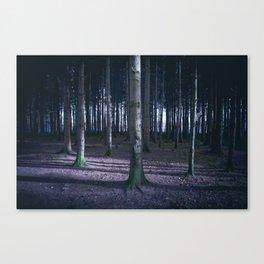 Hiding from afar Canvas Print