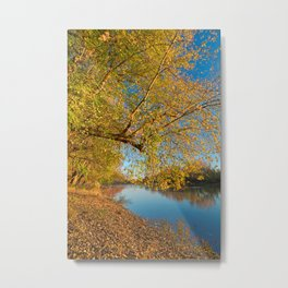 Golden Potomac Hour Metal Print