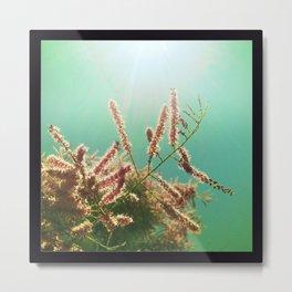Underwater Summer Metal Print