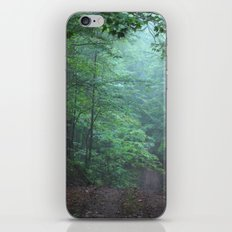 Light in the Forest iPhone & iPod Skin
