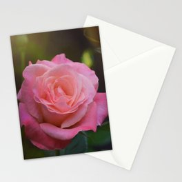 Rose 395 Stationery Cards