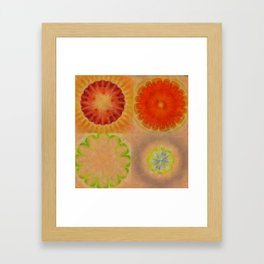 Nontransmittal Sense Flower  ID:16165-112135-50620 Framed Art Print