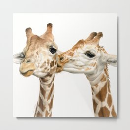 Smoochin' (Square Format) Metal Print