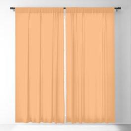 Orangesicle Pastel Orange Tropical Solid Color Parable to Valspar Tangerine Cream 2007-3C Blackout Curtain