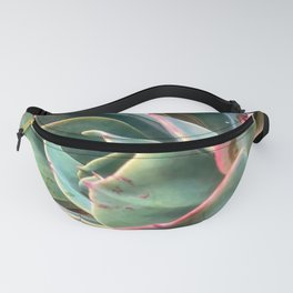 closeup green and pink succulent plant Fanny Pack