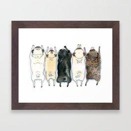 The Pug Spectrum - Pug butts in a row Framed Art Print