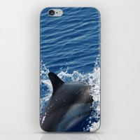 dolphins iPhone & iPod Skins featuring Dolphins by Lab&co