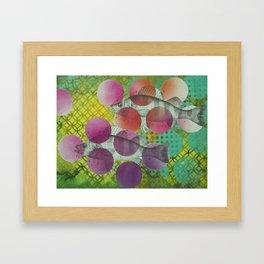 Swim little fishies Framed Art Print