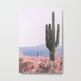 Warm Desert Metal Print