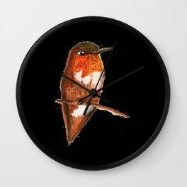 Allen's Hummingbird Wall Clock