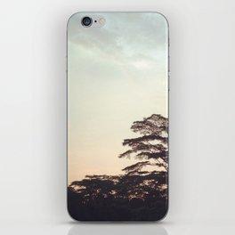 the faint sunset iPhone Skin