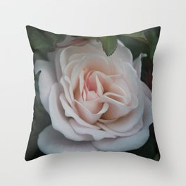 Soft Rose Throw Pillow