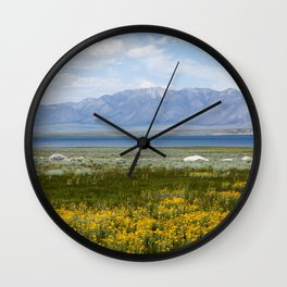 From Flowers to Mountains (Mono Lake, California) Wall Clock