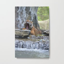 It's Too Hot For This Metal Print